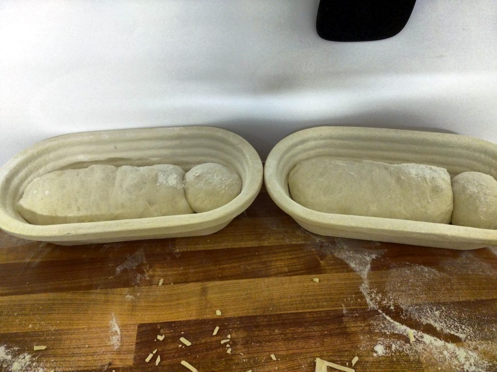 cheese loaves proofing